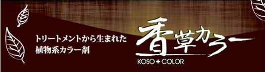 kouso pop e1456921056391 - 男の白髪染め◆頭皮にやさしい香草カラー