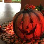 IMG 0333 e1507454172735 150x150 - ハッピーハロウィン☆Happy Halloween